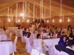 Event Management - shaheen tent service
