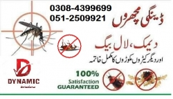 General Distributors in Islamabad